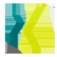 Xing Logo 2